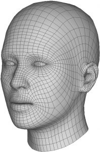 The 4D Face Model (4DFM) base mesh
